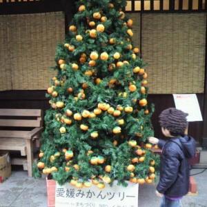 TKT48広報部・2014年12月の記事まとめ