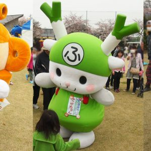【イベント予告】4/23、はにぽん女子部・黄金の深谷もやし収穫体験ツアー!