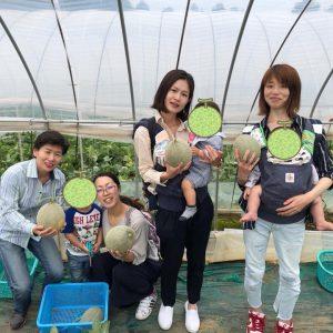 【イベント報告】メロンの生産量日本一!TKT48チーム茨城で、メロン狩り!